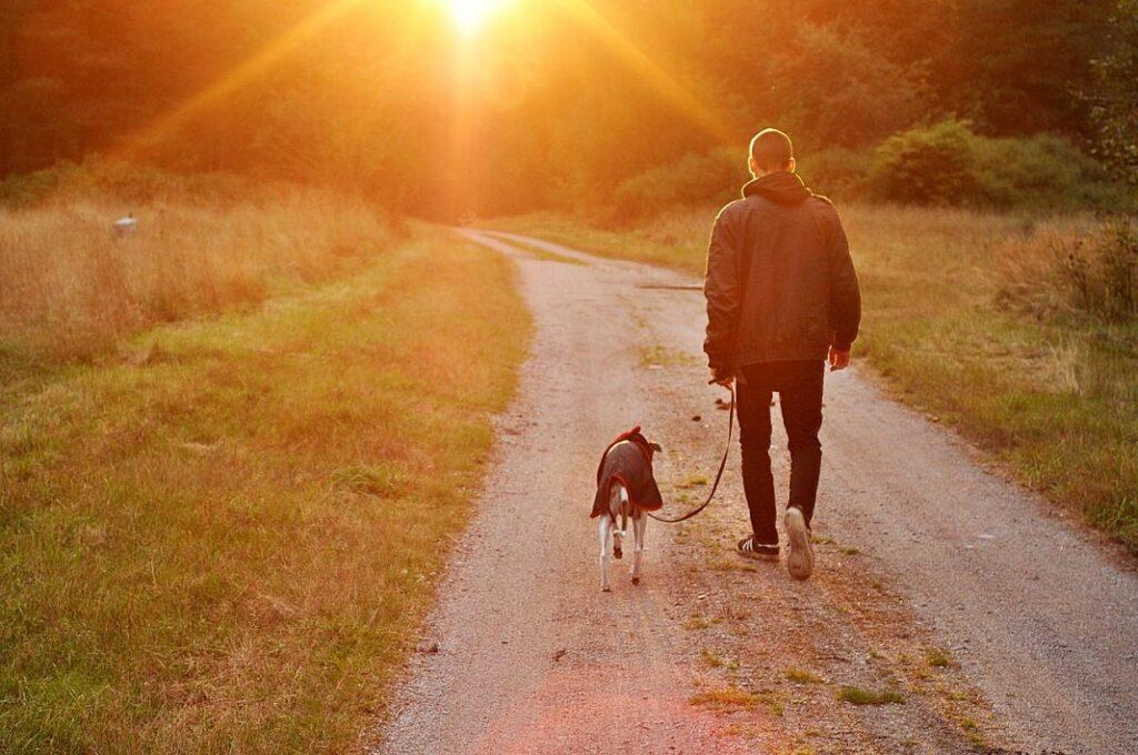 passeggiata cane coronavirus